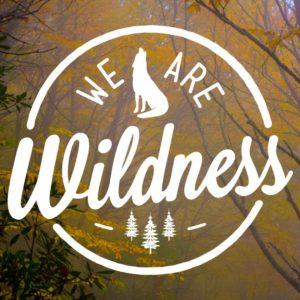 www.WeAreWildness.com