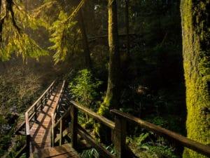 Schooner Cove, Vancouver Island, Tofino Road trip