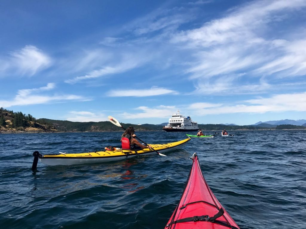 Kayaking, WildCoast, Vancouver Island, Campbell River