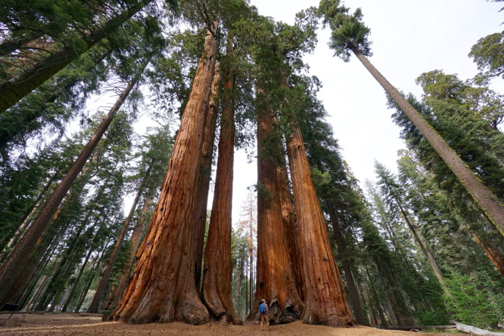 Affordable Ultimate Western National Parks Road Trip