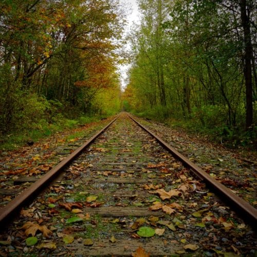 Vancouver Island Fall Railroad Chris Istace Personal Finance Money Tips