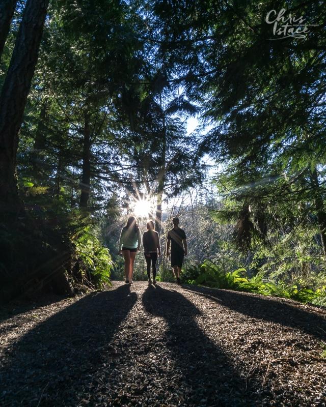Three Pillars to Good Health Chris Istace Chemainus Lake