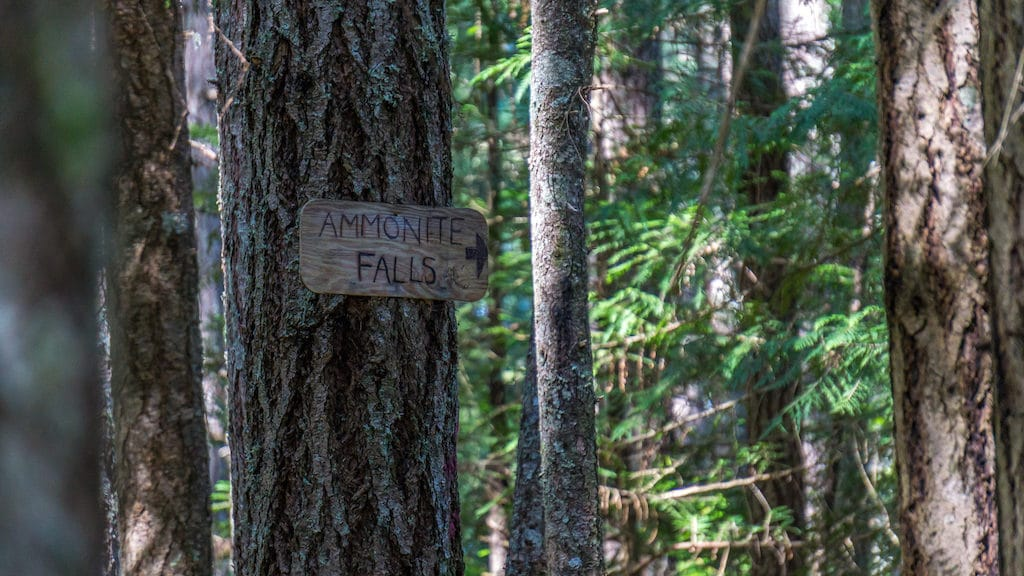 Ammonite Falls Hiking