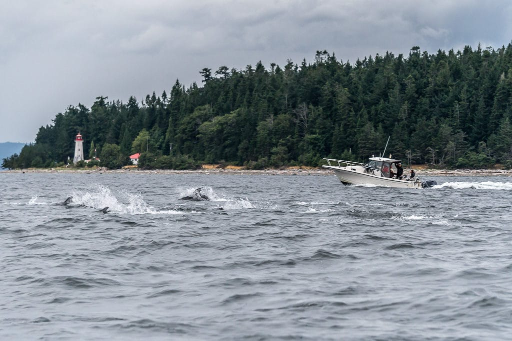 fishing, campbell river, vancouver island
