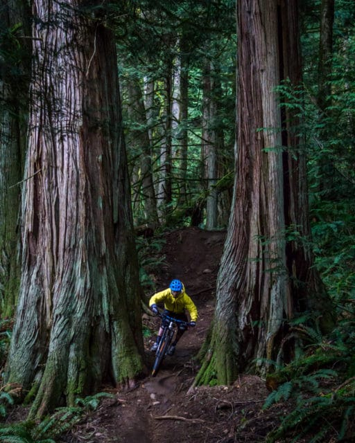 Washington Bellingham Chuckanut Mountain Biking
