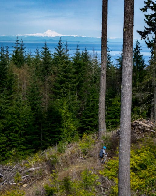 Washington Port Angeles Mountain Biking