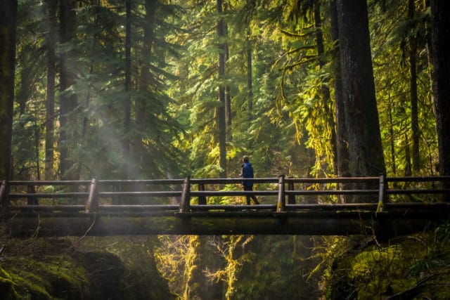 Olympic Peninsula Chris Istace Sol Duc Falls