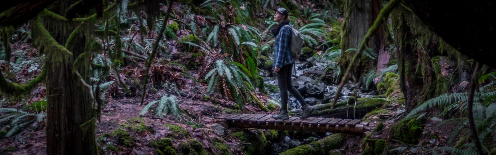 Two Port Alberni Day Hikes You Should Do