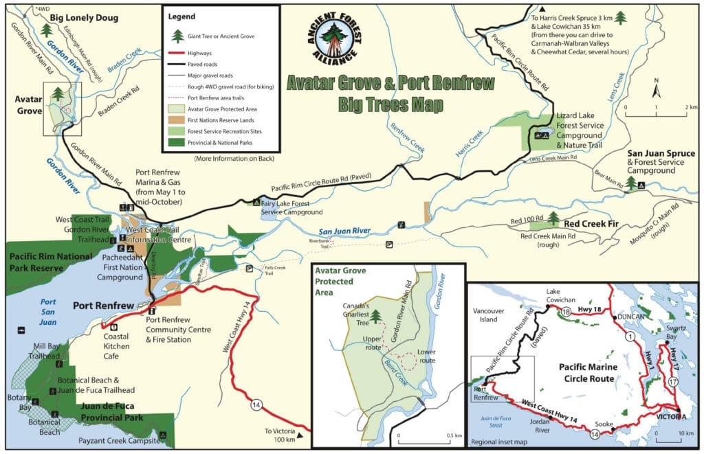 Ancient Old Growth Trees of Port Renfrew big tree map vancouver island