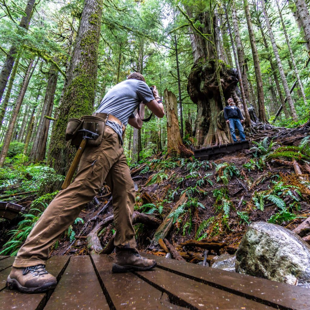 Ancient Old Growth Forests of Port Renfrew Avatar Grove TJ Watt Ancient Forest Alliance