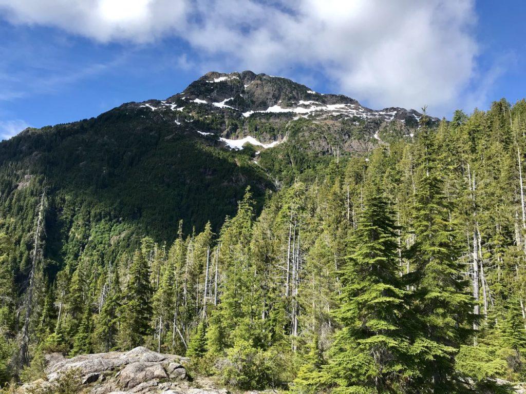 Pogo Mountain hike climb Vancouver island