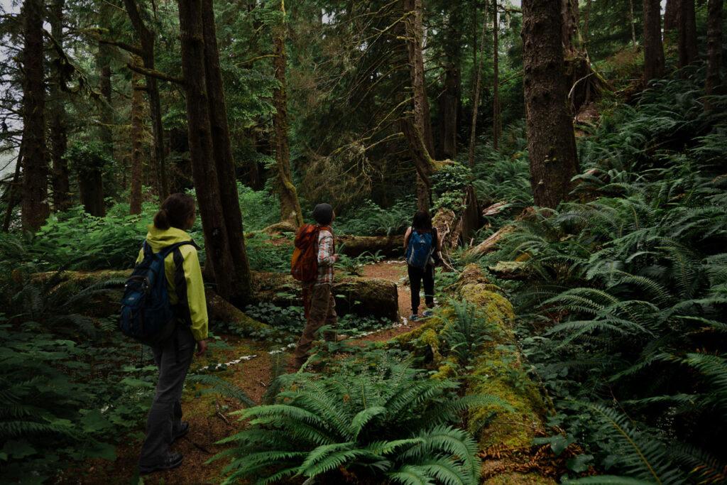 Kiixin Village Tour Huu-ay-aht Bamfield Vancouver Island