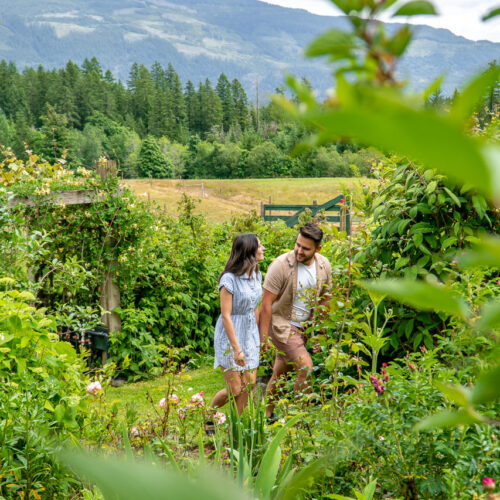 Port Alberni Outdoor and Food Lovers Must Do